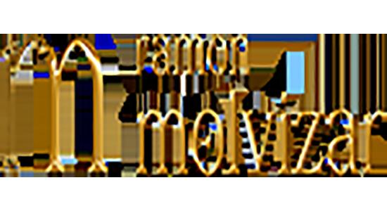 Ramon Molvizar